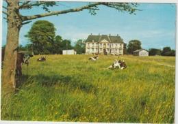 Manche :  ANNOVILLE : Le  Château  1976 , Vache - Autres Communes