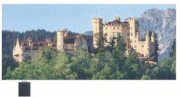 BRD Hohenschwangau Eintrittskarte 2014 Schloss Hohenschwangau Ludwig II. - Eintrittskarten