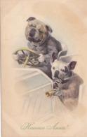 Cpa - Ill-vienne / Viennoise-chien ( Bulldog ) Humanisé Conduisant...-art Nouveau-M.M.Vienne N°393 M.Munk-heureuse Année - Vienne