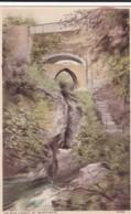 AT03 The Devil's Bridge, Aberystwyth - Cardiganshire