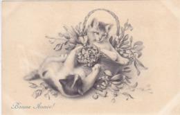 Cpa - Ill-vienne / Viennoise- Chat Jouant-art Nouveau-M.M.Vienne N°555 M.Munk-bonne Année - Vienne