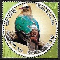 BANGLADESH - MNH - 2016 :     Common Emerald Dove  -  Chalcophaps Indica - Tauben & Flughühner