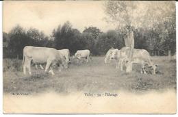 Vichy:Paturage - Vichy