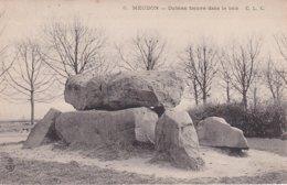 L100D_415 - Meudon - 6 Dolmen Trouvé Dans Le Bois - Meudon