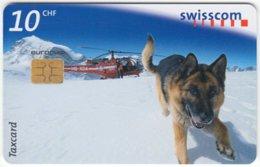 SWITZERLAND C-313 Chip Swisscom - Animal, Rescue Dog - Used - Schweiz