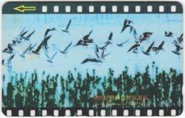 CHINA D-298 Magnetic STT - Animal, Bird - 27SHEA - Used - China
