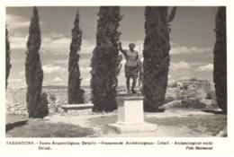POSTAL  TARRAGONA  - CATALUNYA  - DETALLE DEL PASEO ARQUEOLÓGICO - Tarragona