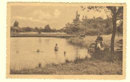 A0150[Postkaart] Verlofkolonie Te Westmalle / Vijver. (Photo Hoelen) Malle Zwemvijver Kinderen Zwemmen Kolonie Vakantie - Malle