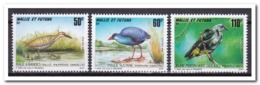 Wallis Et Futuna 1993, Postfris MNH, Birds - Nuevos