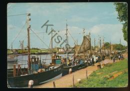 Enkhuizen - Aankomst Vissersvloot [AA26 1.159 - Niederlande