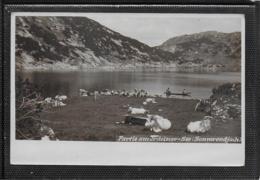 AK 0355  Partie Am  Jrdeiner-See ( Irdeiner-See ) Am Sonnwendjoch Um 1903 - Brixlegg