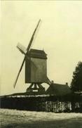 IZEGEM (W.Vl.) - Molen/moulin - Maxikaart Van De Verdwenen Bosmolen Voor Zijn Vernieling In Oktober 1918 - Izegem