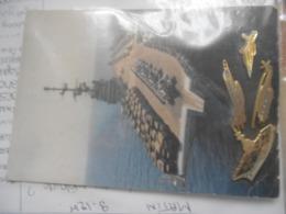 Vieux   Carte Postale Avec Pins   / Clemenceau Porte Avions - Collections