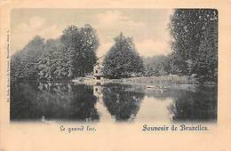 Belgium Souvenir De Bruxelles Le Grand Lac Bateau Boat Lake - Belgique