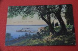 Lago Di Garda Verona S. Vigilio Gli Uliveti 1911 Ed. Modiano - Italia