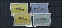 MAZEDONIEN 1993 Satz FISCHE Postfrisch (85297) - Fishes