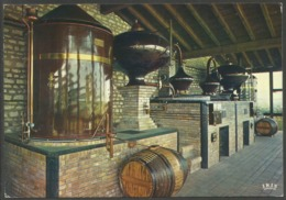 France Charente Distillerie Oblitération Mortagne Sur Gironde - Francia