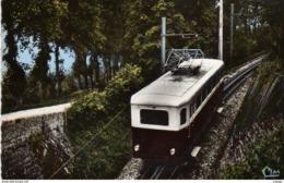 LANGRES 52.  Automotrice Au Milieu De Son Parcours   Carte Photo  2 Scans  TBE - Treni