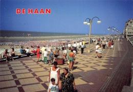 België West-Vlaanderen DE HAAN Coq Sur Mer  The Magic City  Zee Strand En Dijk     M 538 - De Haan
