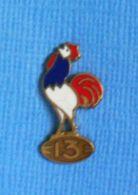 1 PIN'S //   ** RUGBY 13 / COQ SPORTIF TRICOLORE ** . (FRAISSE DEMEY PARIS) . à VIS - Rugby