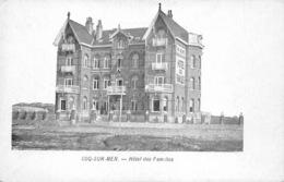 België West-Vlaanderen De Haan   Hôtel Des Familles   M 568 - De Haan