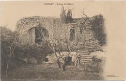 84 - CADENET Ruines Du Château Animée Précurseur - Cadenet