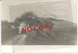 Monte San Pietro, Fotografia Cm. 14,50 X 10,50, Senza Data, Retro Bianco. - Bologna