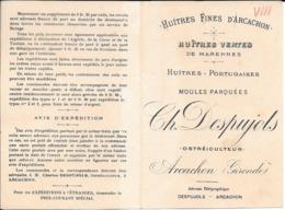 1894 ARCACHON Charles Despujols Ostréiculteur - Publicités