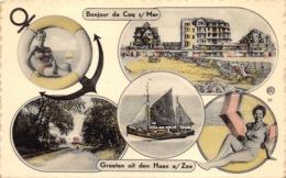 België West-Vlaanderen De Haan  Bonjour De Coq Sur Mer Groeten Uit DE HAAN      M 682 - De Haan