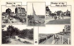 België West-Vlaanderen De Haan  Bonjour De Coq Sur Mer Groeten Uit DE HAAN      M 686 - De Haan