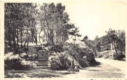 België West-Vlaanderen De Haan  Sous Bois  In Het Bosje      M 700 - De Haan