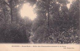 L100D_438 - Ecouen - Sous-Bois - Allée Des Charmettes Menant à La Gare - Ecouen