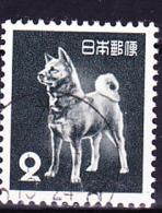 Japan - Akita-Hund (MiNr: 585) 1953 - Gest Used Obl - 1926-89 Emperor Hirohito (Showa Era)