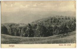 Săliște - View From Crinți - Romania