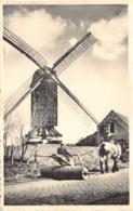 België West-Vlaanderen De Haan  Windmill Klemskerke De Oude Molen Windmolen Boer Met Boerenpaard     M 708 - De Haan