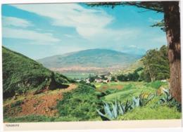 Tenerife - View Of La Laguna From Mercedes Forest - (Islas Canarias) - Tenerife
