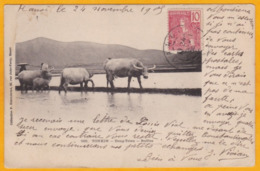 1905 - 10 C Rouge Grasset YT 28 Sur CP De Hanoi, Tonkin Vers Poste Restante, Constantinople, Turquie, Bureau Français - Covers & Documents