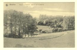A0175[Postkaart] Bruxelles / Avenue De Tervueren. Dans Le Parc De Woluwé. (Nels) [Brussel Park Van Tervurenlaan] - Bosques, Parques, Jardines