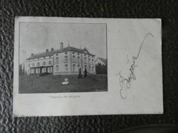 Cpa Château De Hogne - Somme-Leuze