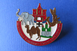 Pin's Broche,Elephant,chameau,escargot,lapin,chateau, Konstanzer Narrengesellschaft,carnaval - Kraftstoffe