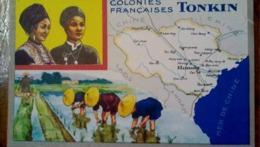 TONKIN /COLONIES FRANCAICAISES / CHROMO DE LION NOIR CIRAGE / HISTORIQUE AU DOS - Carte Geographique