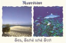 CP Ile Maurice 2000 - Ile Plate  Située Au Nord De Maurice - Mauritius