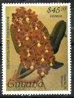 Guyana Expreso Nº 6 En Nuevo - Guyana (1966-...)