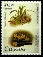 Guyana Expreso Nº 8 En Nuevo - Guyana (1966-...)