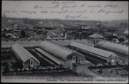 Heverlee Instituut Heilig Hart Kassen 1904 Serres Institut Sacré-Coeur Immaculée Conception - Leuven