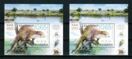 BULGARIA 2019 FAUNA Animals OTTER (Limited Edition!) - Fine 2 S/S (Normal + UV) MNH - Nuovi