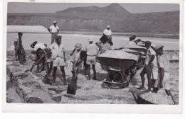 CAP VERT(SAO VICENTE) TYPE(SEL) MARAIS SALANTS - Capo Verde