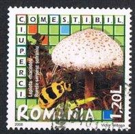 2008 - ROMANIA - FUNGHI / MUSHROOMS. USATO - 1948-.... Repúblicas