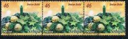 2006 - SERBIA - NATALE / CHRISTMAS. USATO - Serbia