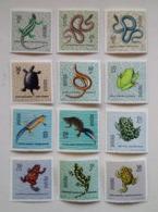 Poland Pologne Set 12 Stamps Reptiles & Amphibians Reptiles Et Amphibiens 1963 Unused - Reptilien & Amphibien